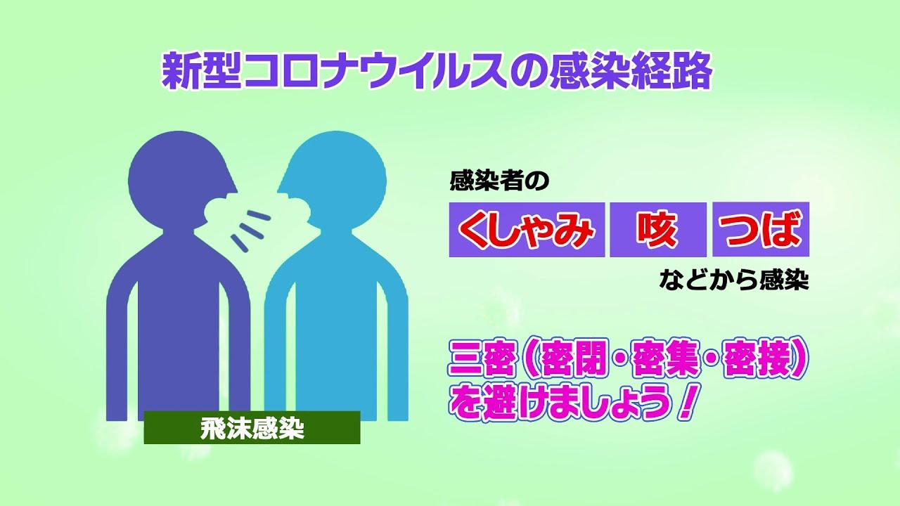 経路 新型 肺炎 感染