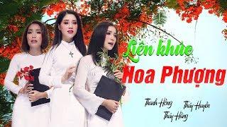 Liên Khúc Hoa Phượng | Siêu Phẩm Bolero Ba Chị Em - Thúy Huyền, Thúy Hằng, Thanh Hồng [Official MV]