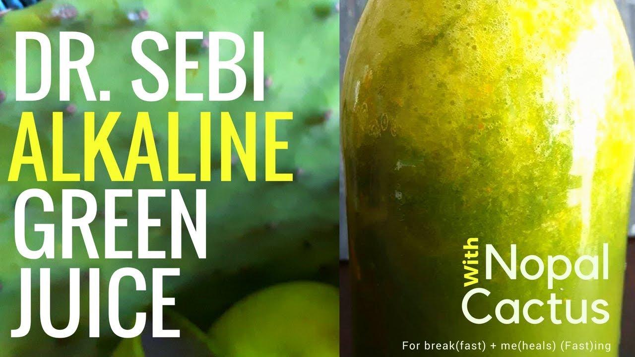 Sebi Alkaline Nopal Cactus Green Juice