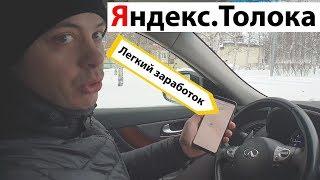 Сколько я заработал на Яндекс ТОЛОКА