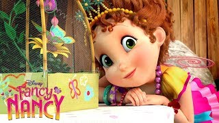 Meet Nancy! | Fancy Nancy | Disney Junior