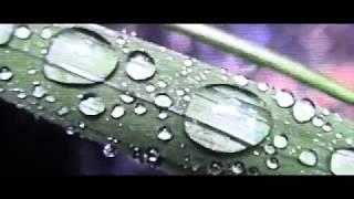 Hnrk & Kodyak - Geosmin EP