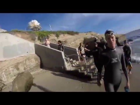 The Arch Academy Zombie Patrol's Ocean Swimming Quest