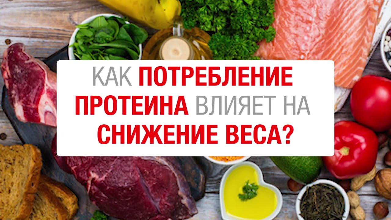 Как потребление белков влияет на снижение веса?
