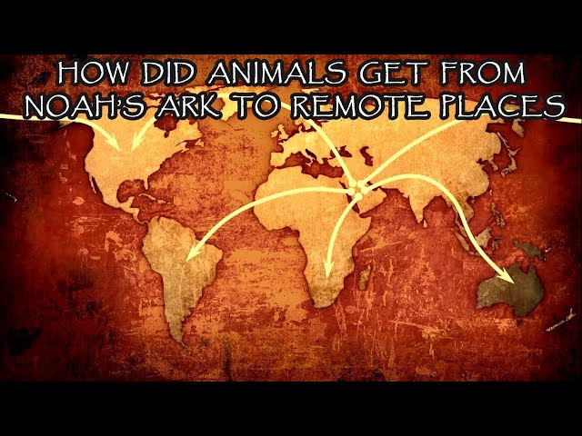 How did animals get from Noah's Ark (Middle East) to Australia, etc?