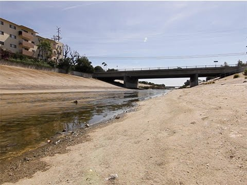 The Solution to California's Drought: A Free Market in Water