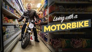 What It's REALLY Like Living With A Mini Motorbike