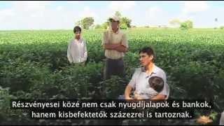 Monsanto szerint a világ