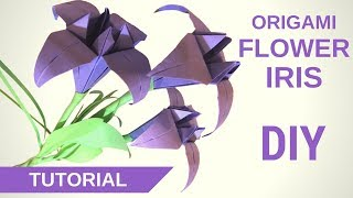 Ирисы из бумаги. Оригами ирисы в подарок на 8 марта! - Hand made