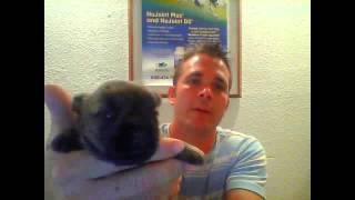 Webcam Video From August 13, 2015 10:44 Pm (utc)