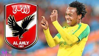 رسميا مدرب منتخب جنوب افريقيا يعلن عن مفاجاة لجماهير النادى الاهلى : قريبا اخبار سعيدة لبيرسي تاو