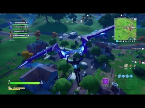Fortnite Win W/ The Squad