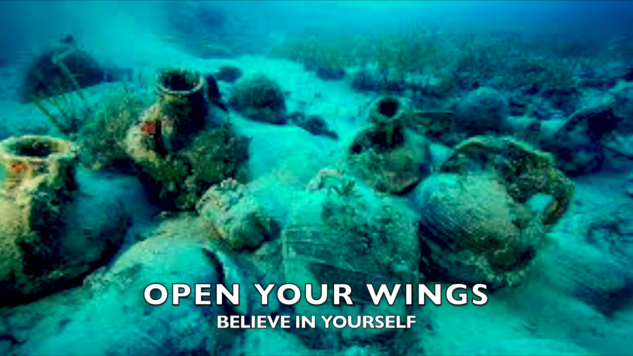 Open your wings by Uma Nagaswara Rao et Veronica Antonelli