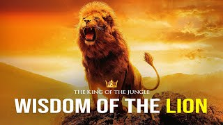 Wisdom Of The Lion - Powerful Motivational Video