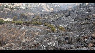 104 حرائق تلتهم لبنان من شماله إلى جنوبه