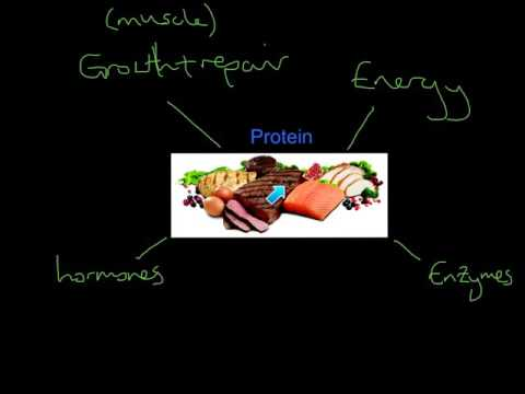 Roles of Nutrients