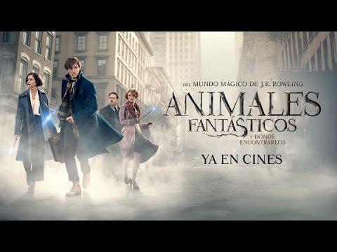 Película de los Animales fantásticos y cómo encontrarlos