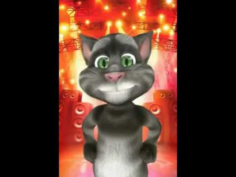 Gato: hoy es viernes!! It † s friday!!