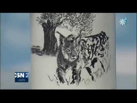El aceite del lince: Primer Día de Cosecha Picualia en Canal Sur Noticias