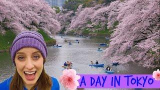 IMPERIAL PALACE & CHIDORIGAFUCHI | Tokyo, Japan