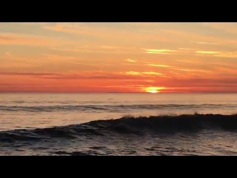 Sunset with the dolphins in Carlsbad California