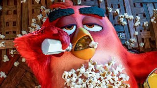 The Pig's Invade Red's Home Scene - THE ANGRY BIRDS MOVIE 2 (2019) Movie Clip thumbnail