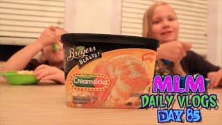 Ttt: Orange Creamsicle Ice Cream! Mlm Daily Vlogs! Day 85?