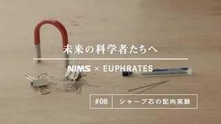 未来の科学者たちへ #08 「シャープ芯の配向実験」