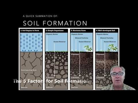 Soil formation and the soil forming factors teaching for Soil forming factors