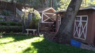DIY  Chicken Coop Easy to Build and Clean!!!
