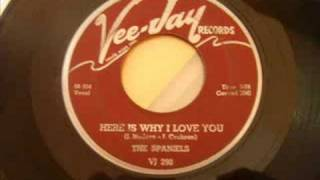 Beautiful Doo Wop - The Spaniels - Here Is Why I Love You