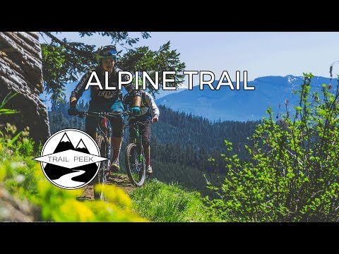 Fern Freeway - Alpine Trail  - Mountain Biking Oakridge, Oregon