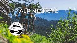 Fern Freeway - Alpine Trail  - Mountain Biking Oakridge, Oregon