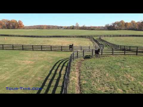 Peretti Farms Yearling Farm Cream Ridge New Jersey 08514