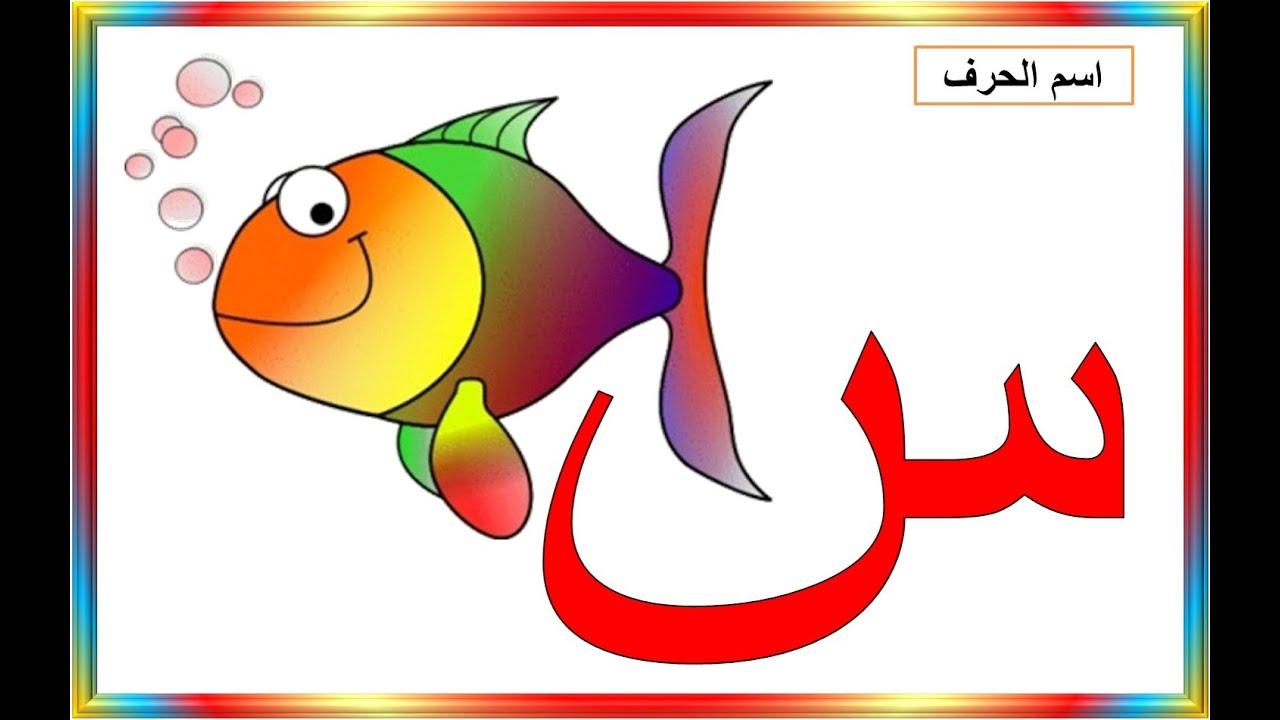 تعليم حروف الهجاء - حرف السين Arabic language courses ...: https://www.youtube.com/watch?v=USDjGDvURuU