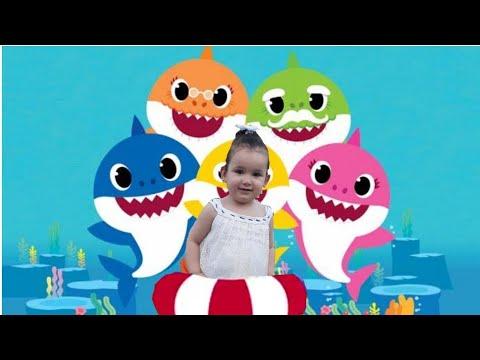 Baby shark dance🐳 اغنية بيبي القرش - YouTube