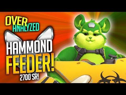 Overwatch Coaching - The HAMMOND FEEDER! [OverAnalyzed]