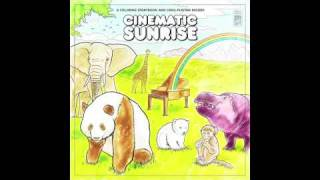 Watch Cinematic Sunrise Umbrellas And Elephants video