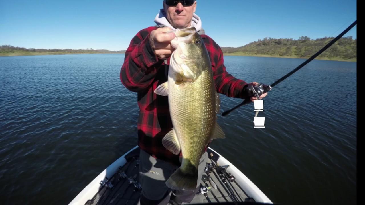 January don pedro bbt prefishing jig and swimbait fishing for Don pedro fishing report