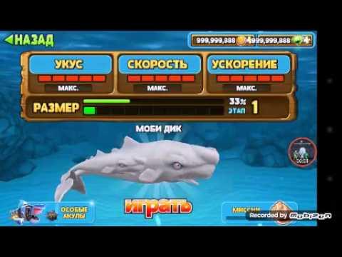 Hungry shark все виды акул