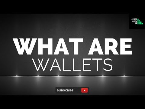 WHAT ARE: WALLETS (Hot/Cold/Hardware) - Extended