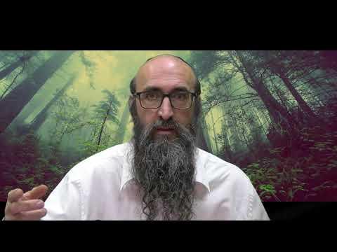 ON VA CHANGER LE MONDE 13 - Le secret des 6 tsadikim, les beaux cheveux - Rav Itshak Peretz