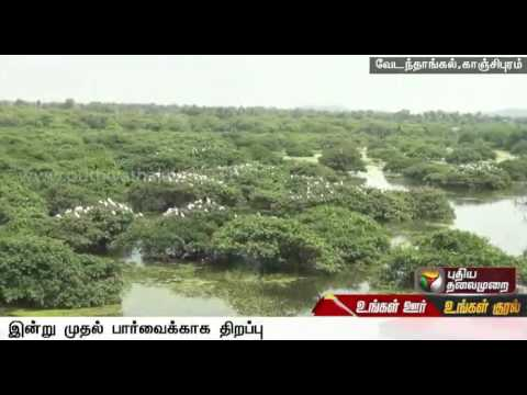 Vedanthangal Bird Sanctuary opened for tourists from today
