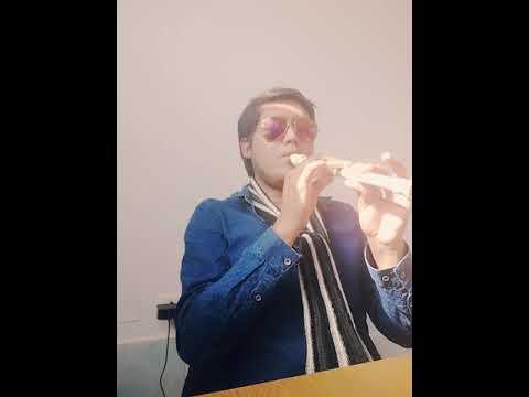Asi fue ♬ Flauta dulce para niños Educ.  Básica o media