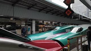 東北新幹線E5系 東京2020大会 オリンピックラッピング車両