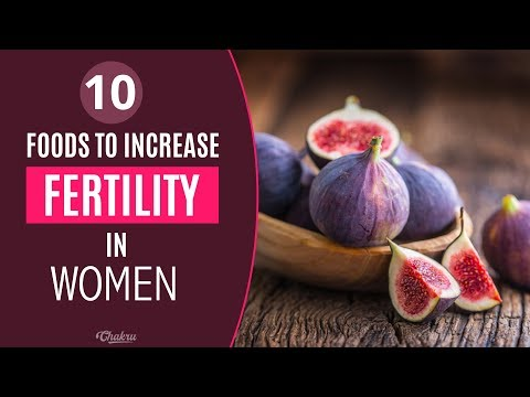 10 Foods That Increase Fertility For Females and Chances to Get Pregnant