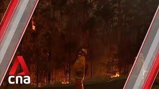 Australian PM Scott Morrison apologises for taking holiday during bushfire crisis