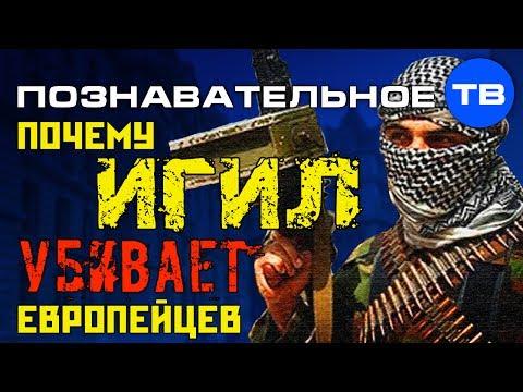 Почему ИГИЛ убивает европейцев? (Познавательное ТВ, Артём Войтенков)