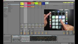 PreSonus ATOM and Ableton Live: Knobs