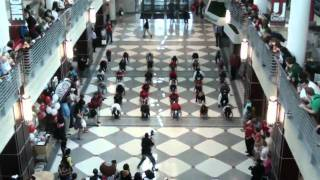 Flash Mob Dance at Ohio State